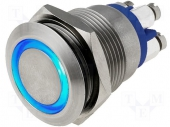 Stainless Steel Blue Illuminated Push Button